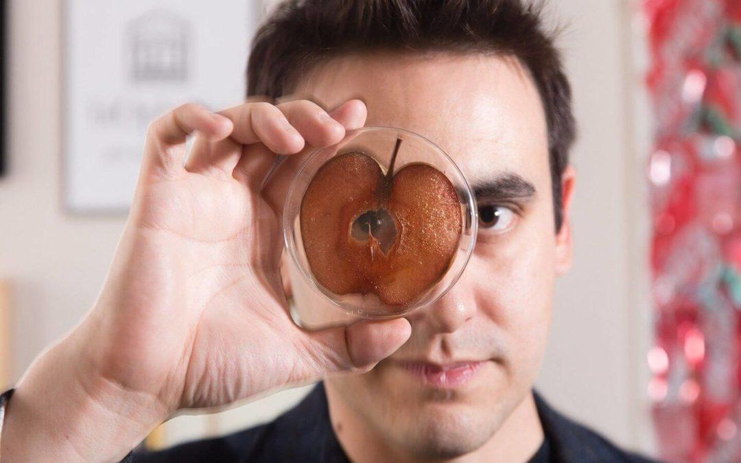 用蘋果培養出耳朵(安德魯·佩爾霖)