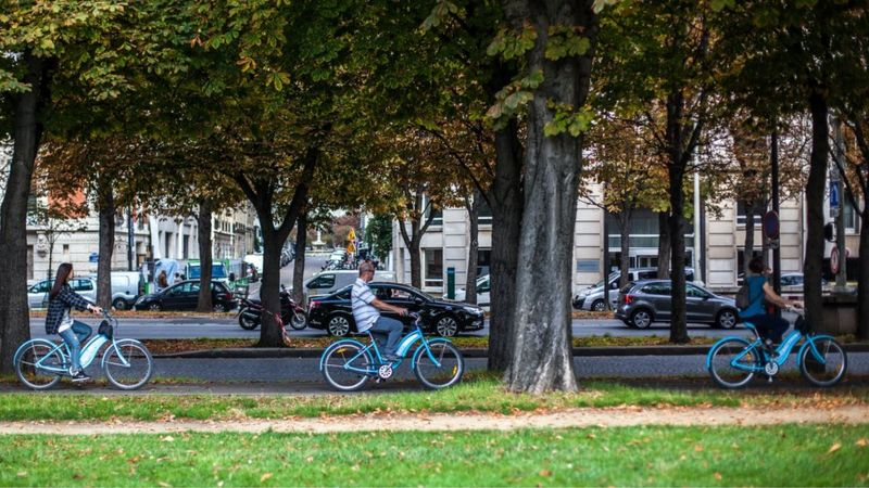 Cycling grows in Amsterdam